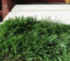 luxury grass carpet