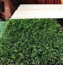 lawn grass carpet