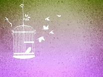 1583315270_bird-cage-680027_1920.png