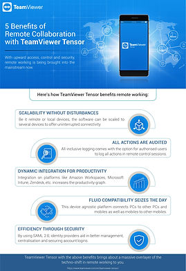 TeamViewer_Infographic - 5 Benefits of R