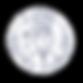 Digital service_Adapatation and translat