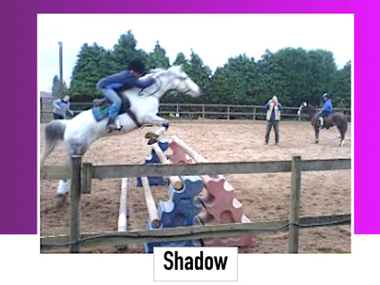 Shadow 13.1HH