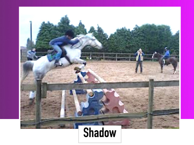 Shadow 13.1HH