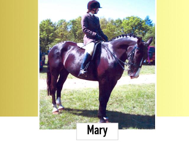 Mary 15.3HH