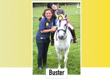 Buster 11.2HH