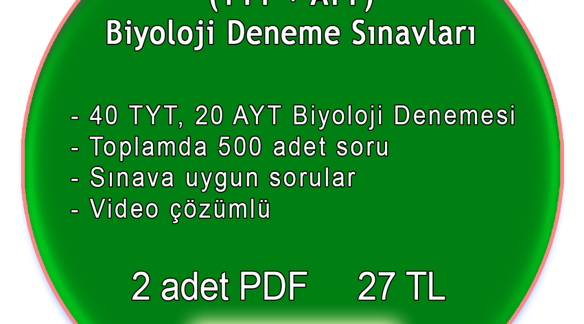 ikitytayt2.png