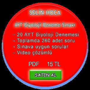 aytsatis2.png