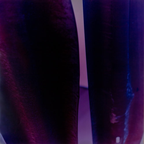 Untitled (Purple Forms)