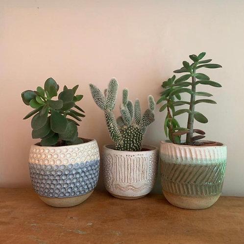 Clay At Home Kit (make a planter)
