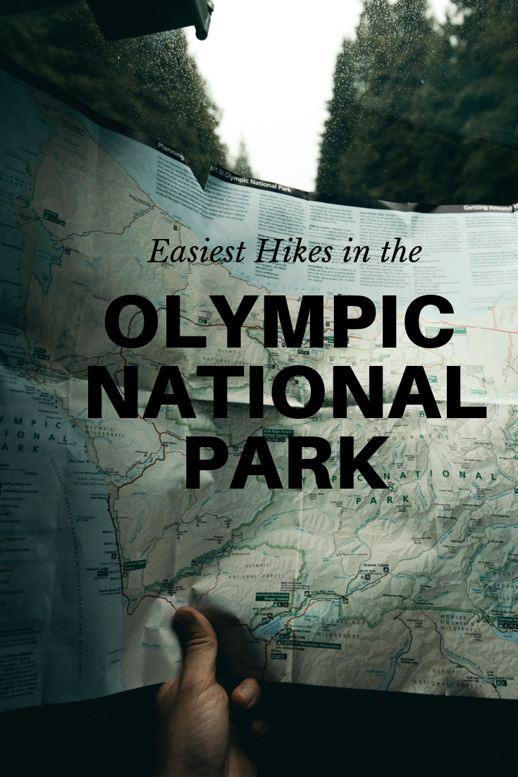 10 Super Easy Hikes in the Olympic National Park : PNW KIDS