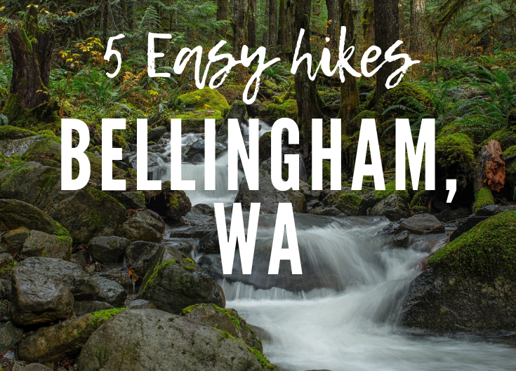 5 Easy Hikes in Bellingham, WA for Kids