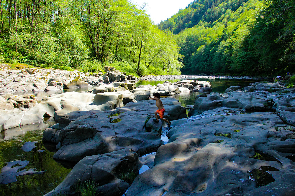 Wilson River at Keening Creek, Tillamook Forest