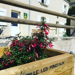 ©Gite_Avrille_Les_Ponceaux_37