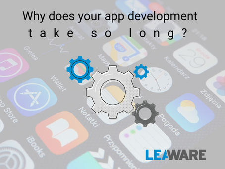 Why does your application development take so long? 5 most common reasons.