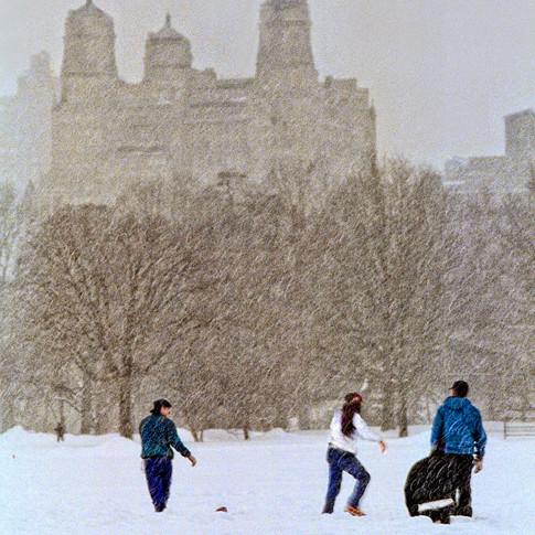 Central Park Touch