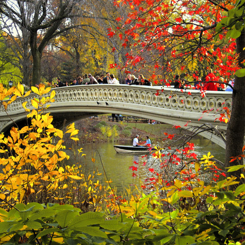 Central Park Bow Bridge Fall