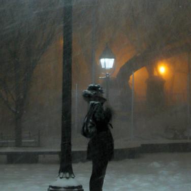 Solitary Snow