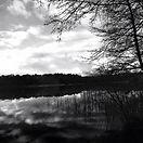 Bad-Saarow-lake