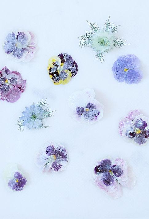 Fleurs_cristallisées.jpg