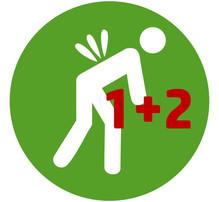 Rückenyoga-Kurse 1+2.jpg