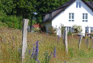 Raum-Heilung: Wohnung   Haus & Grundstüc