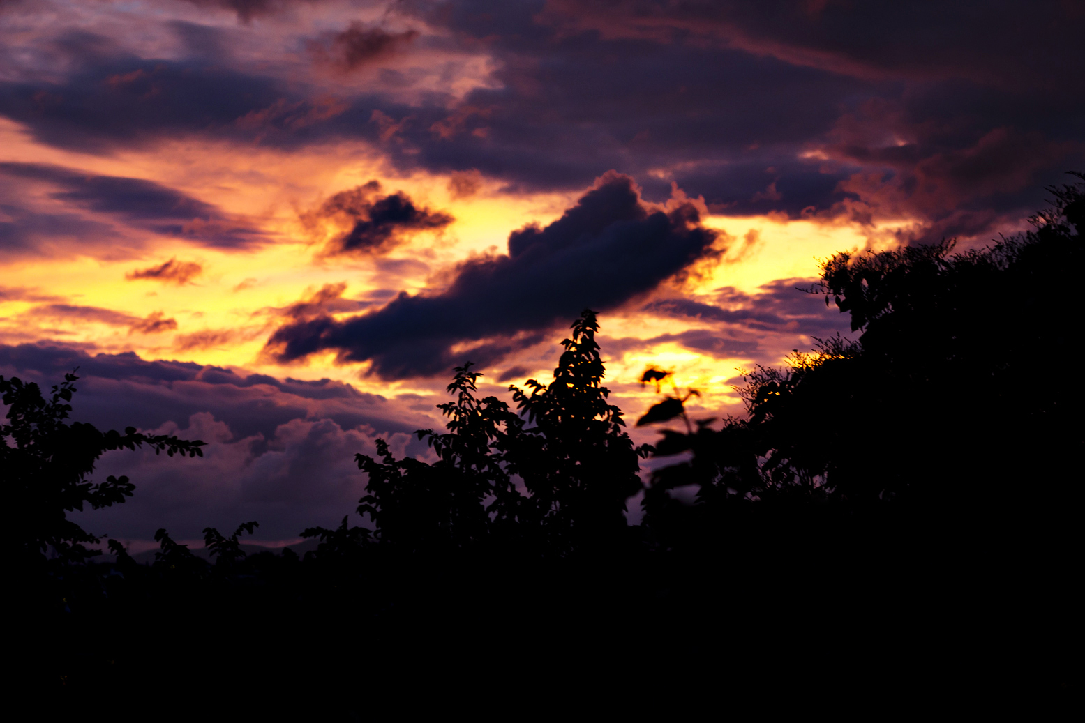OP Sunset