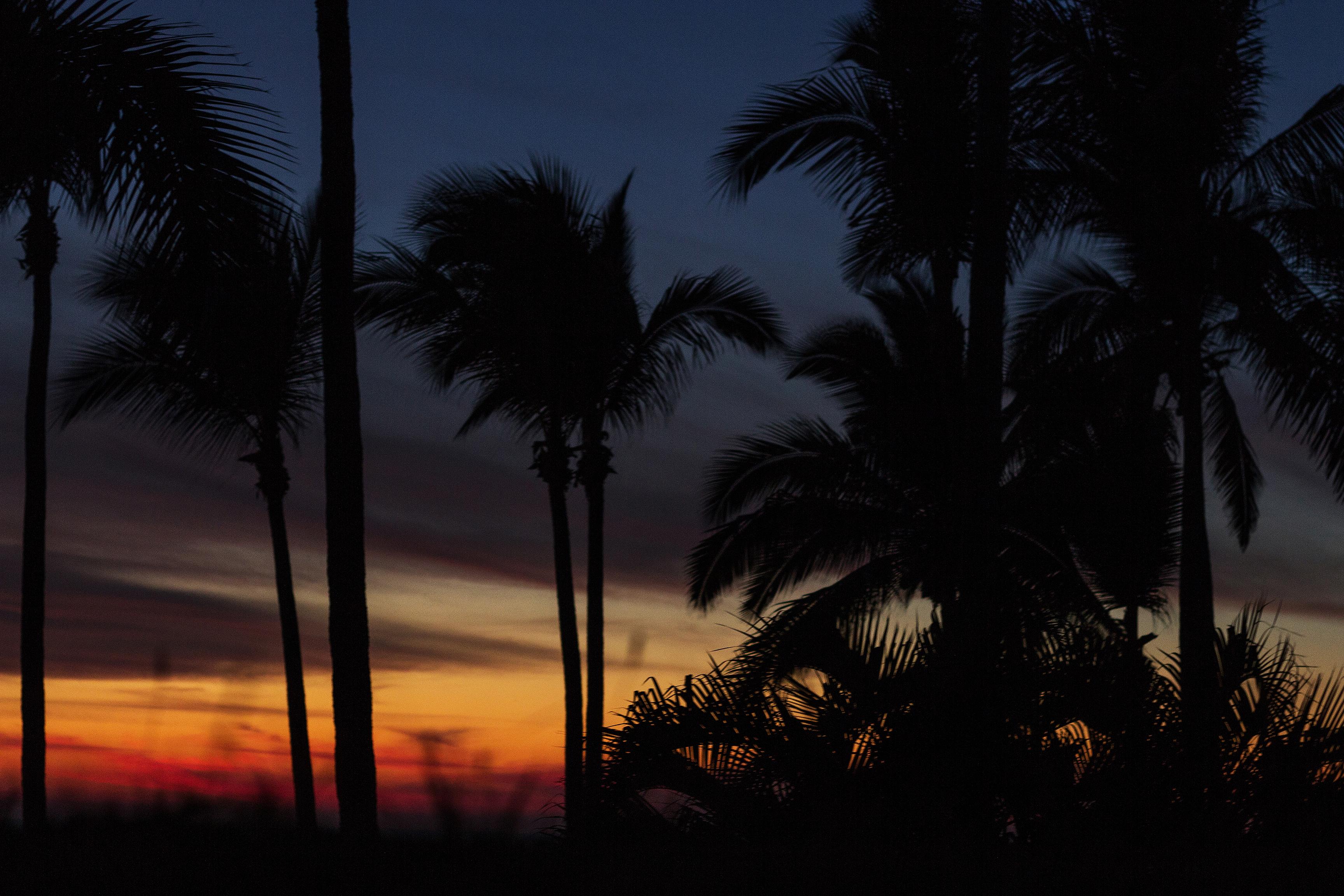 LSD Sunset