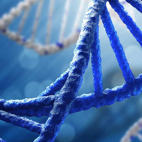 Guarding Your Brand's DNA