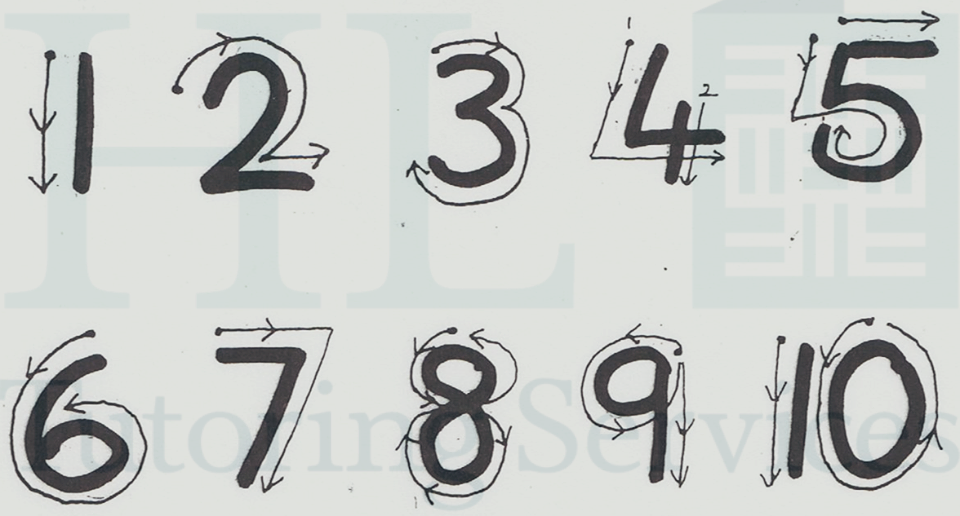 Early number formation