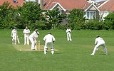 Friends Playing Cricket