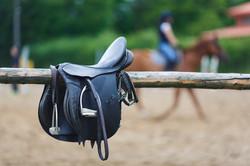 Equitation Nantes à l'espace équestre de Mazerolles