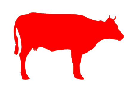 cow-transparent_edited.png