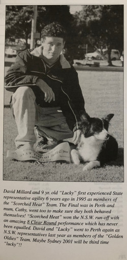 2001- David