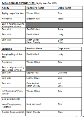 1999 Annual Awards.PNG