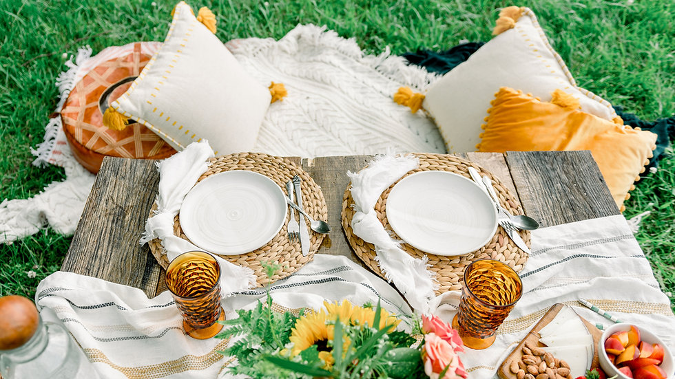 Styled Picnic Package