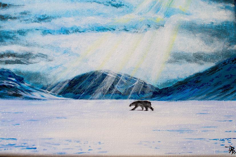 Polar Bear's Journey