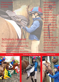 Updated equestrian flyer reverse page.jp