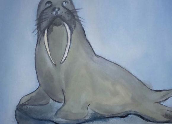 Mr Walrus