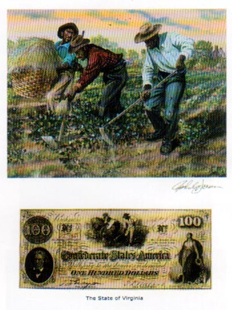 Slaves Hoeing Cotton :  Virginia