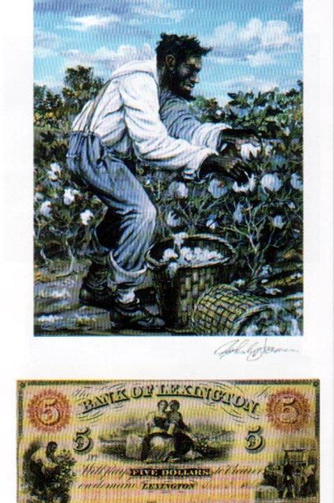 Slave Harvesting Cotton : North Carolin