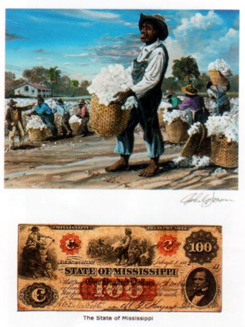 Slave Gathering Cotton : Mississippi