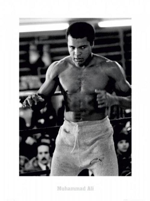 Muhammad Ali The Champ
