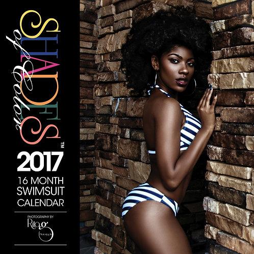 2017 Shades of Color Swim Suit