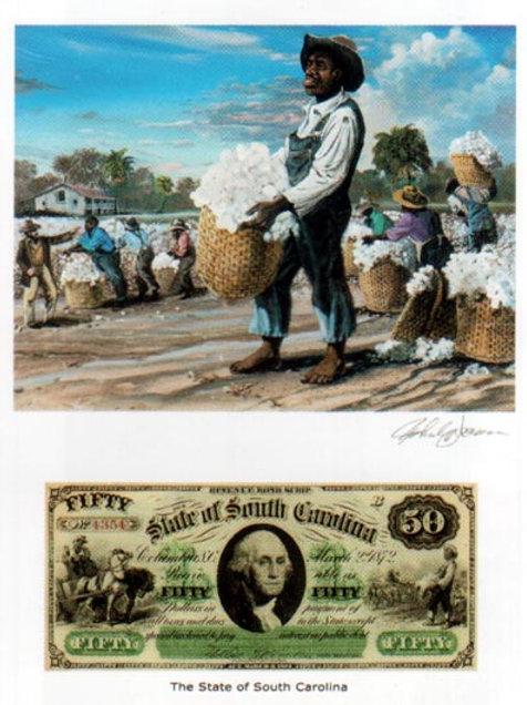 Slaves Picking Cotton : South Carolina