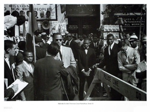 Martin Luther King Jr.& Malcolm X