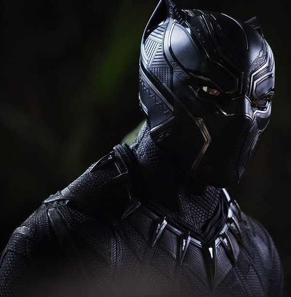 BlackPanther596d2f04d1540_2040_edited.jp