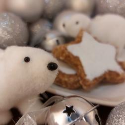 Polar Bear Biscuits
