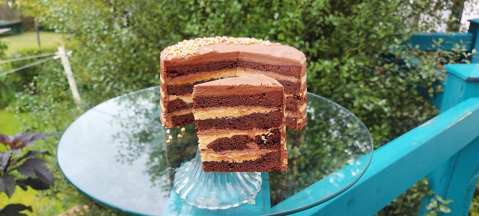Chocolate Peanut Butter Cake 1.jpg