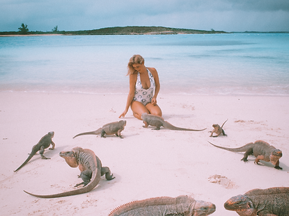 The wanderlovers bahamas sandals emerald bay exumas swimming pigs excursion island routes iguana adventure