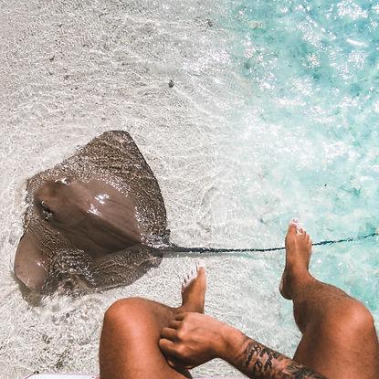 The Wanderlovers Maldives angsana velavaru resort island luxury overwater stingray marine life